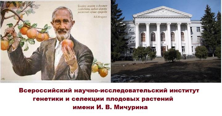 Мичурин и ВНИИ селекции