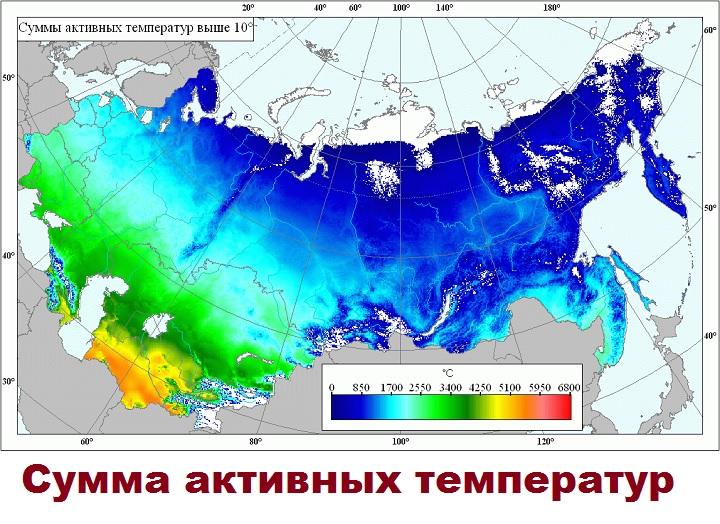 Карта сумм активных температур