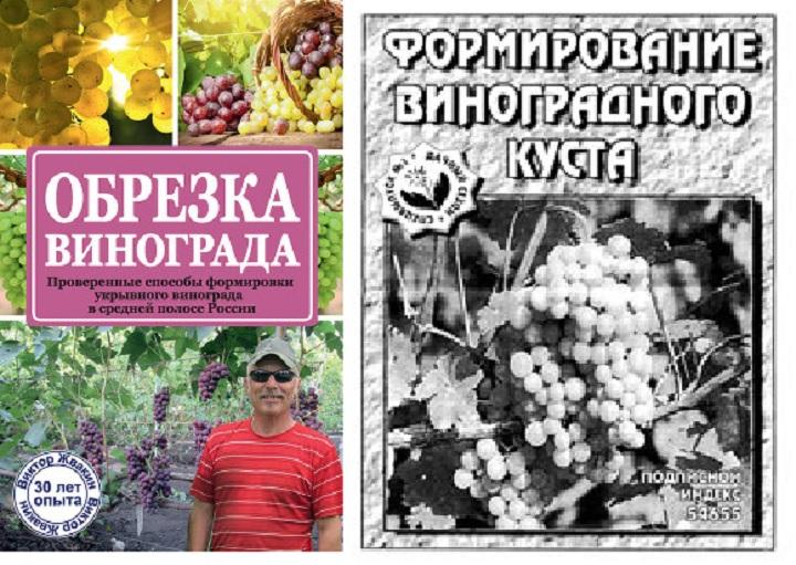 Рекомендуемые книги о выращивании винограда. Обрезка