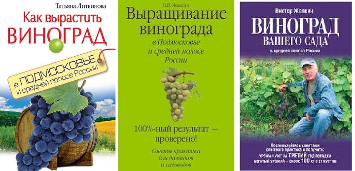 Рекомендуемые книги о выращивании винограда