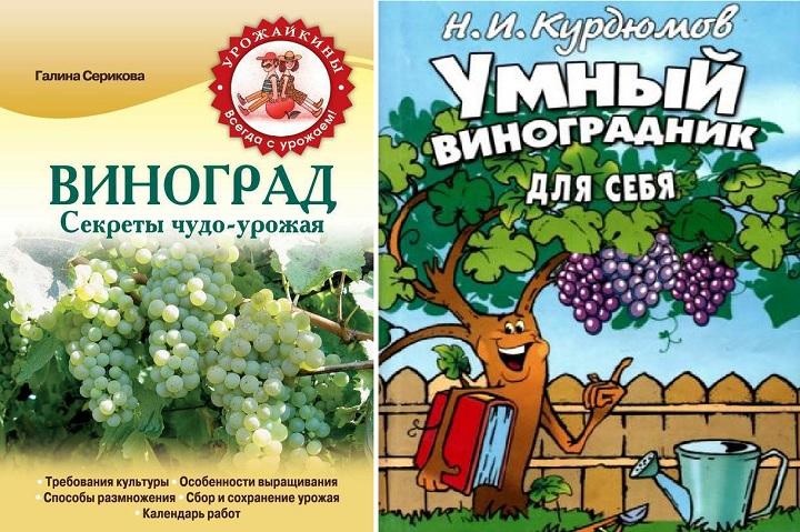 Рекомендуемые книги о выращивании винограда. Урожай