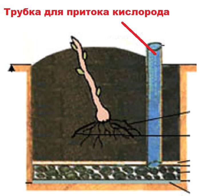 Водопосборная трубка для ямы винограда