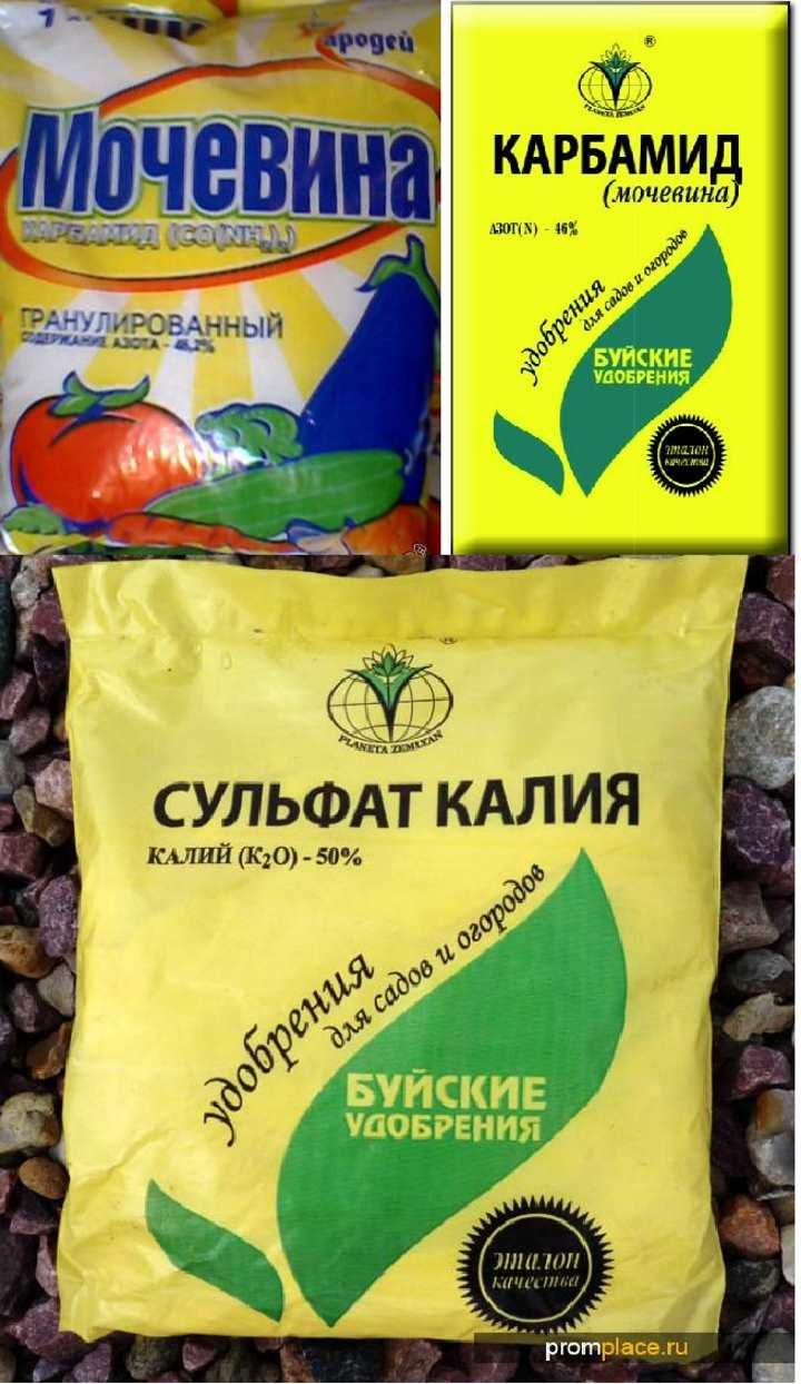 Удобрения для грушевого дерева