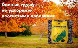 Осенью обойдитесь без азота