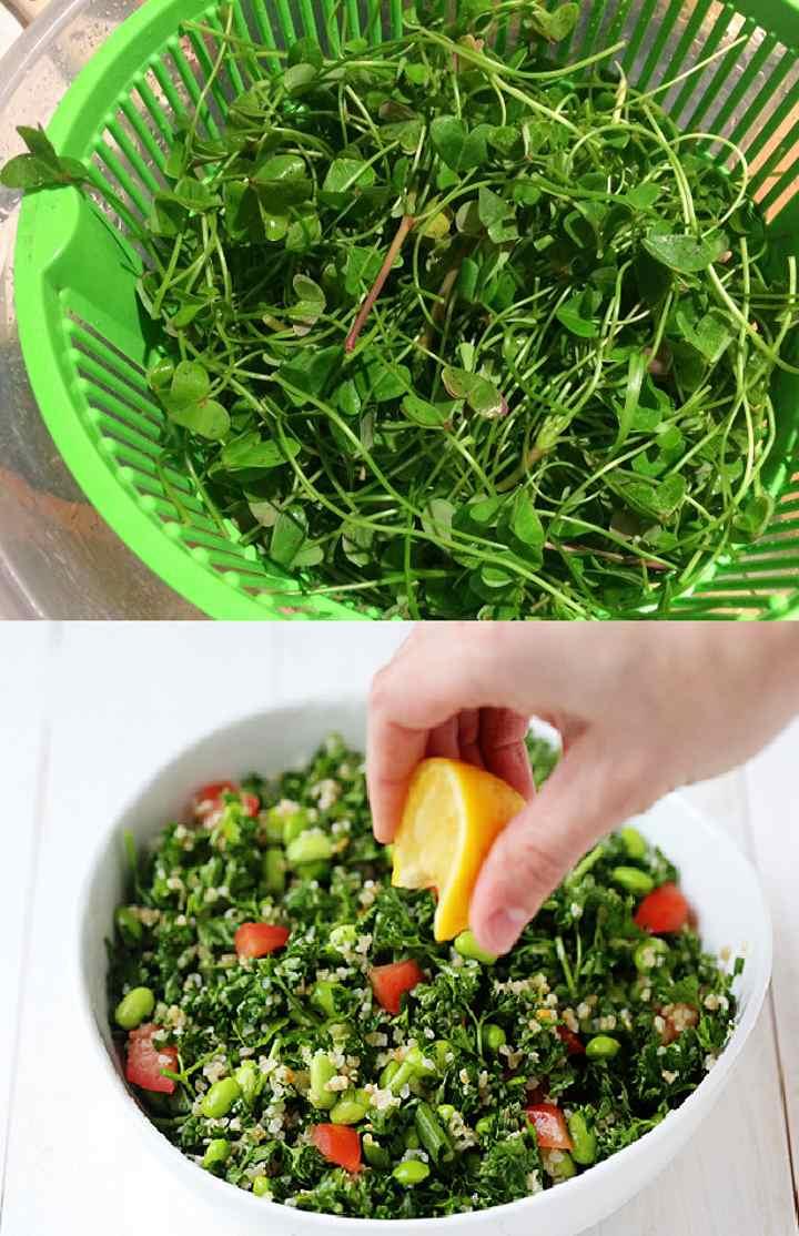 Приготовление салата из кислицы