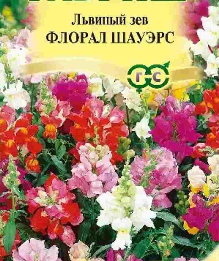 Семена флорал