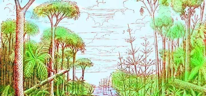 Рисунок древнего папоротника