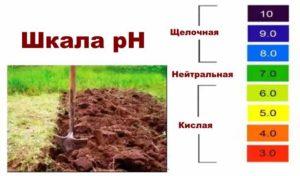 Схема кислотности почвы