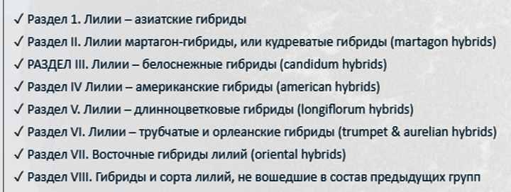 8 разделов классификации лилий