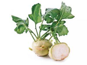 Внешний вид капусты кольраби