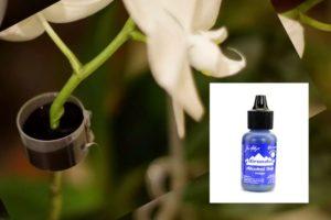 Чернила для орхидеи