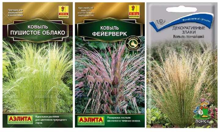 Пакетики семян ковыли