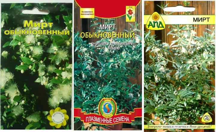 Пакетики семян мирта