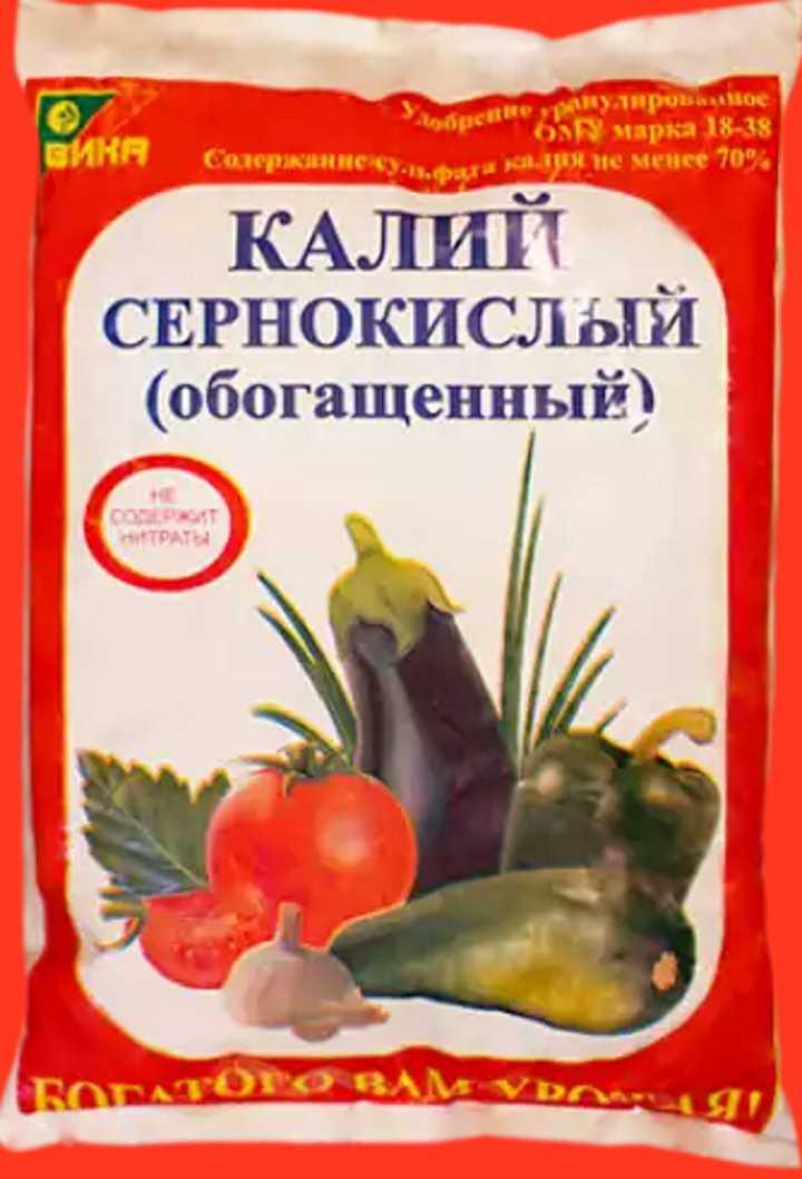 Подкормка чубушника