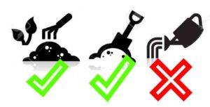 Символы ухода за растением