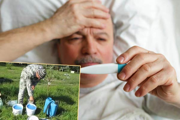 Лихорадка от воздействия бордоской жидкости