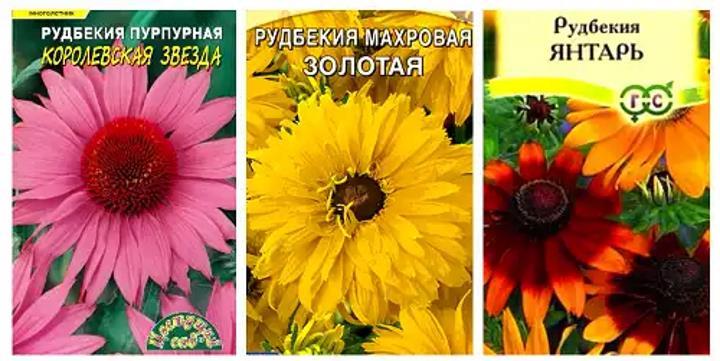 Пакетики семян растения рудбекия