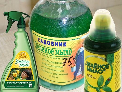 Виды зеленого мыла для сада от вредителей