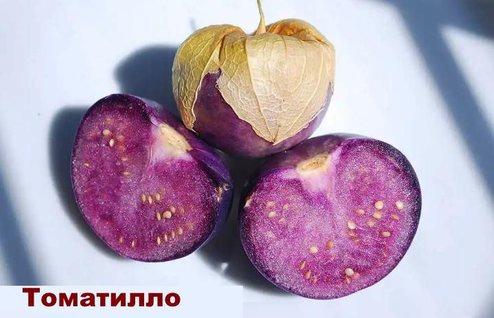 Вид растения - физалис Томатилло