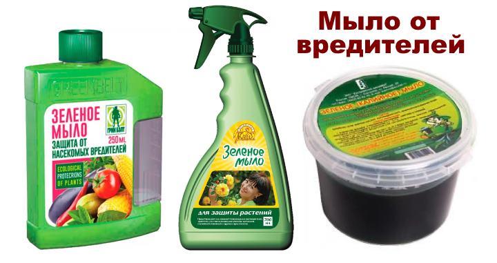 Зеленое мыло от вредителей пентаса