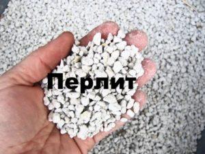 Перлит в руке