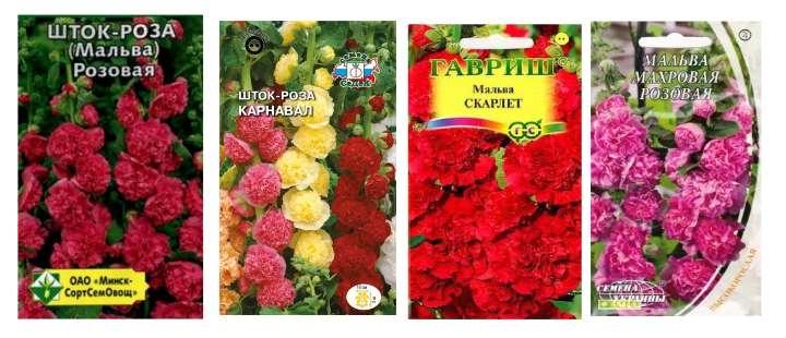 Пакетики семян мальвы