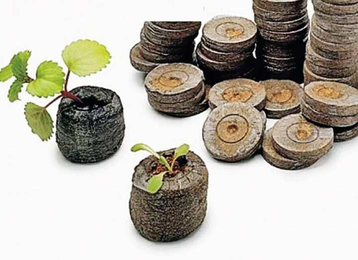 Таблетки для посадки растений