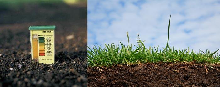 Тест pH - кислотности почвы