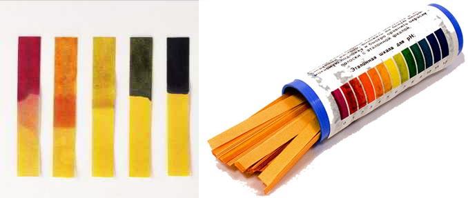 Лакмусовая бумага для определения кислотности почвы