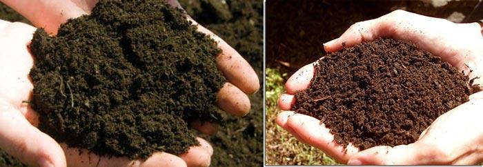 Почва разных оттенков и кислотность