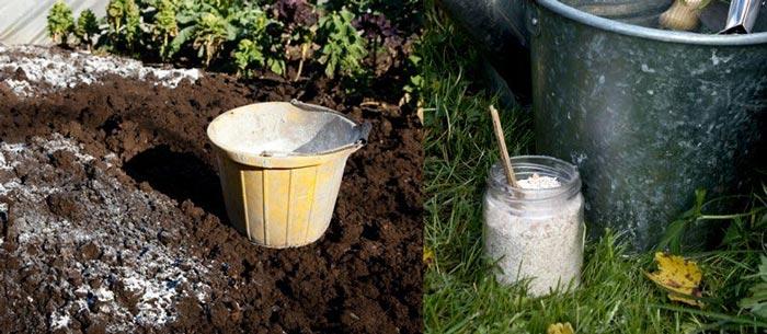 Почва и известь