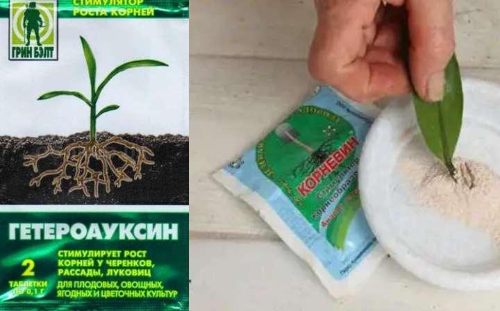 Препараты для обработки корней