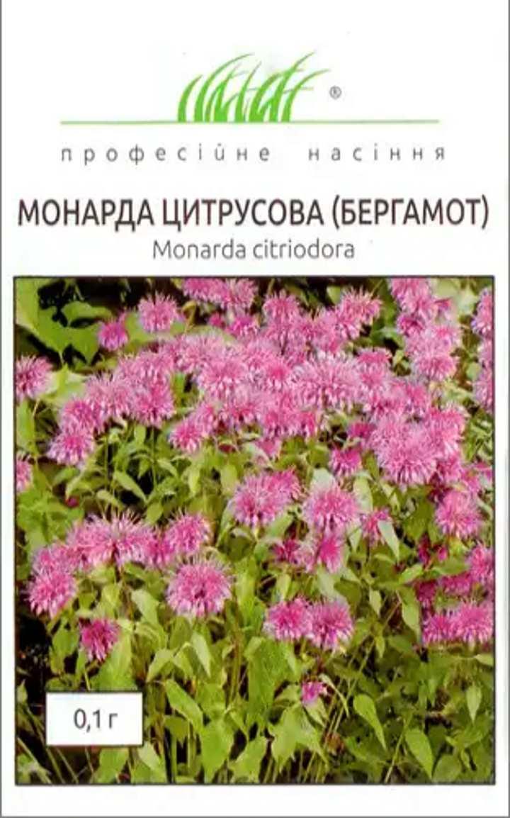 Семена монарды