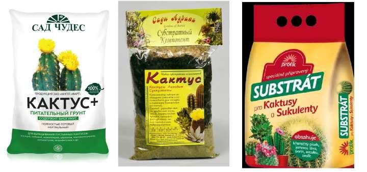 Удобрение и подкормка для кактуса