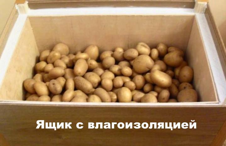 Термоящик для картофеля