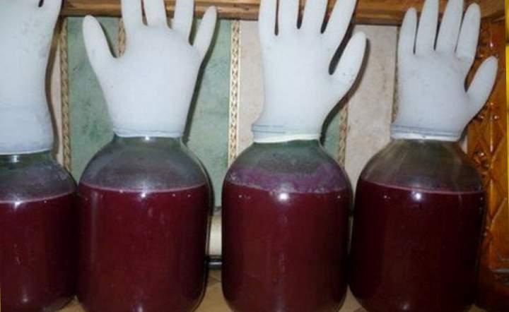 Процесс брожения вина