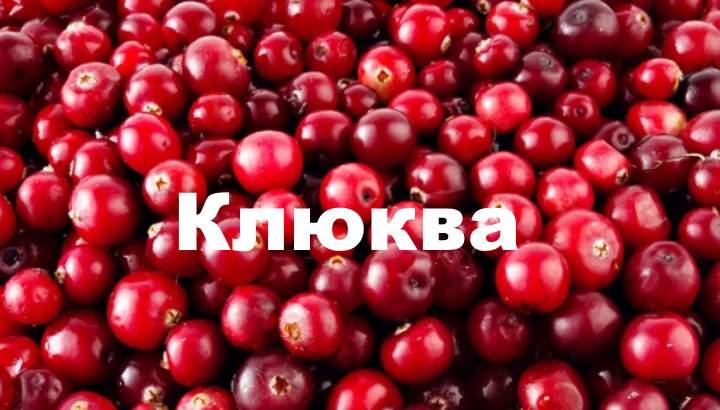 Внешний вид ягоды клюквы