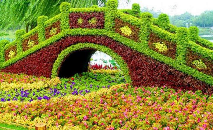 Вид цветника - Многомерный