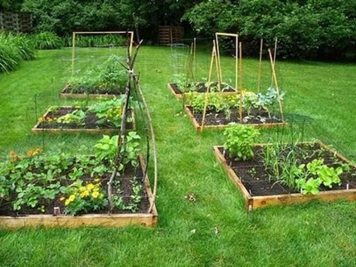 Огород для ленивых людей