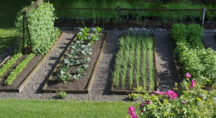 Версия ленивого огорода