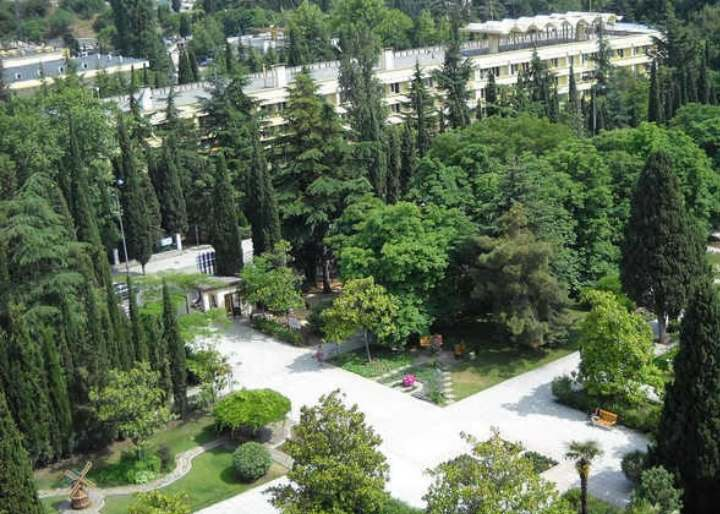 Зеленые насаждения в парке