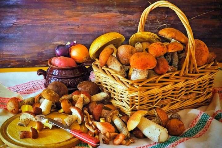 Картина с грибами