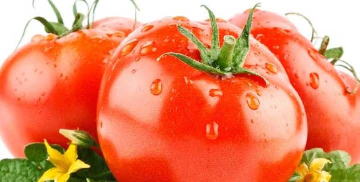Красивый помидор