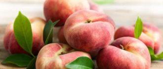 Сорт персика - инжирный