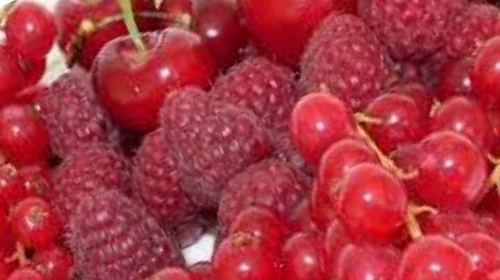 Организм наполняется витаминами, чистится кровь и лимфатическая система
