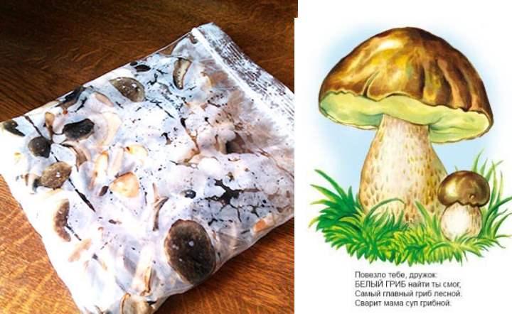 В пакете заморозить грибы