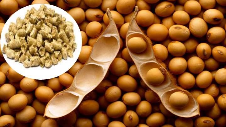 Получается продукт, когда из семян сои выжимают масло, которое отделяется при помощи натуральных растворителей.