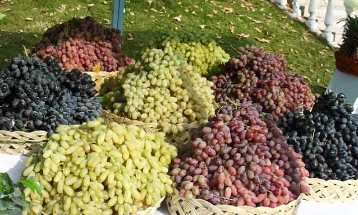 Корзины с виноградом