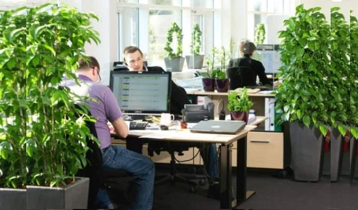 Чем благоприятней атмосфера в офисе, тем работать приятней и комфортней, от этого и производительность становится выше.