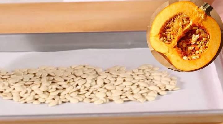Как правильно сушить тыквенные семечкив домашних условиях